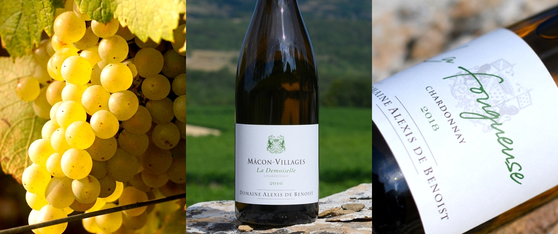 Triptyque vins blancs Alexis de Benoist