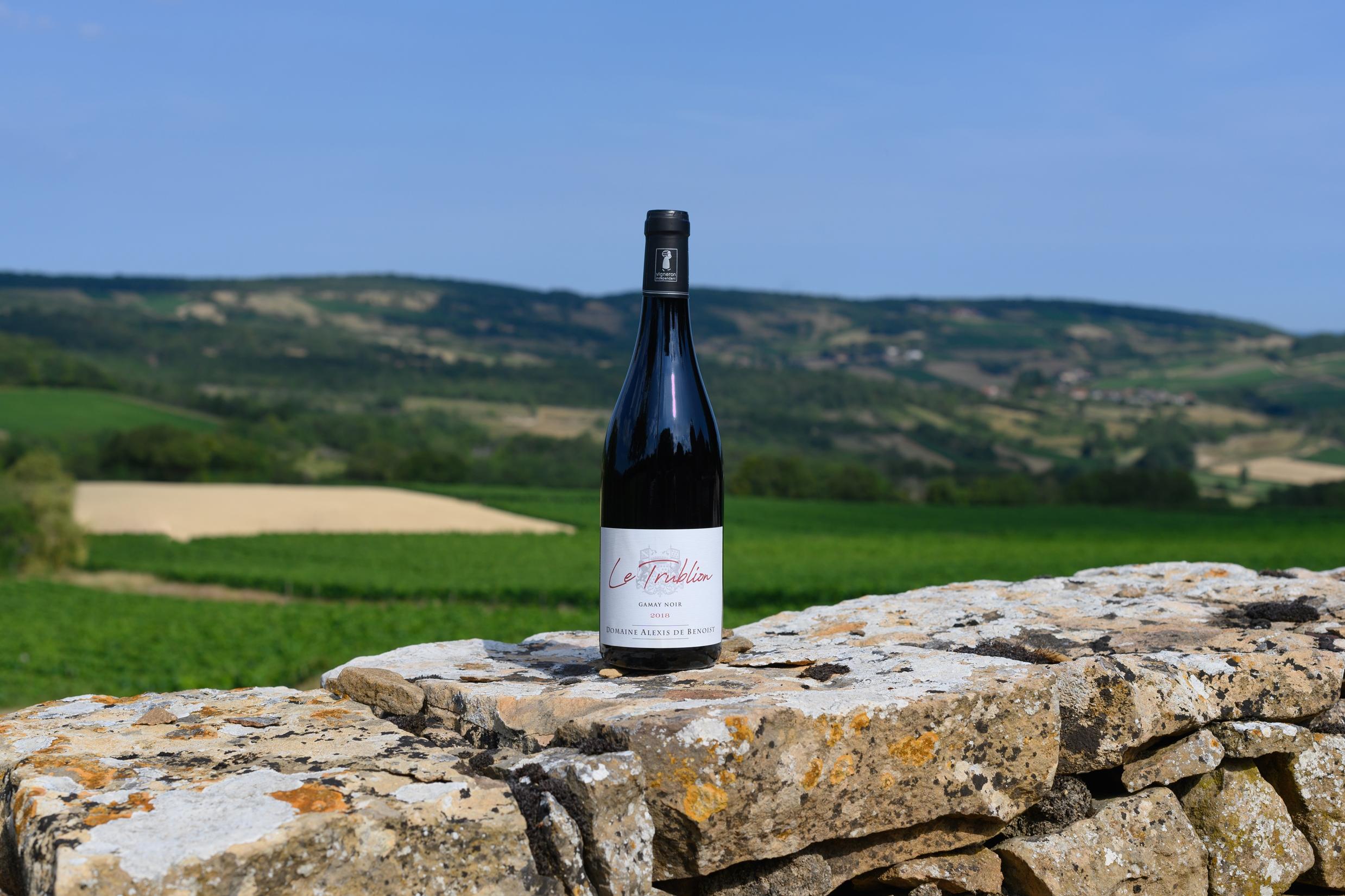 Bouteille Le Trublion Beaujolais-Villages Pierres et Vignes Alexis de Benoist